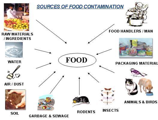 Surse ale contaminarii cu metale grele