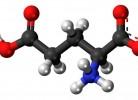 acid-glutamic