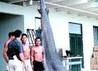mercurul-carne-rechini