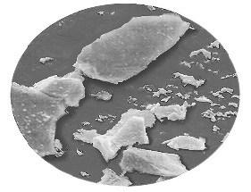 particule de siliciu