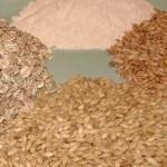 surse alergii si intoleranta alimentara