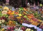 surse de fructoza