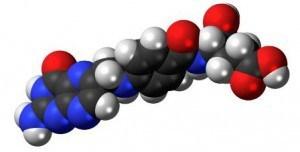 acid folic in timpul sarcinii