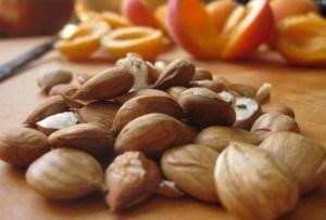 vitamina b17 surse samburi de caise