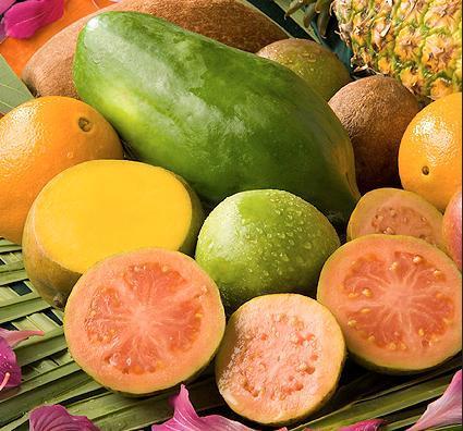 surse de papaina - papaya
