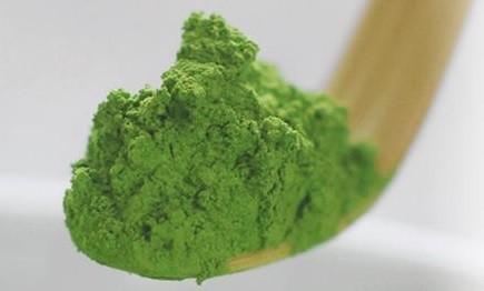 alga chorella